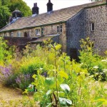 The birth of the Friends of St Ives Bingley –  Historical Herb Garden